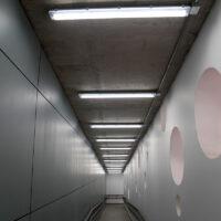 Tubos, Lineales y Ampolletas LED